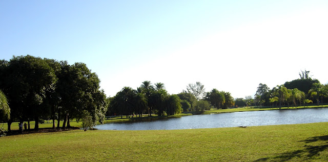 Bosque da Barra