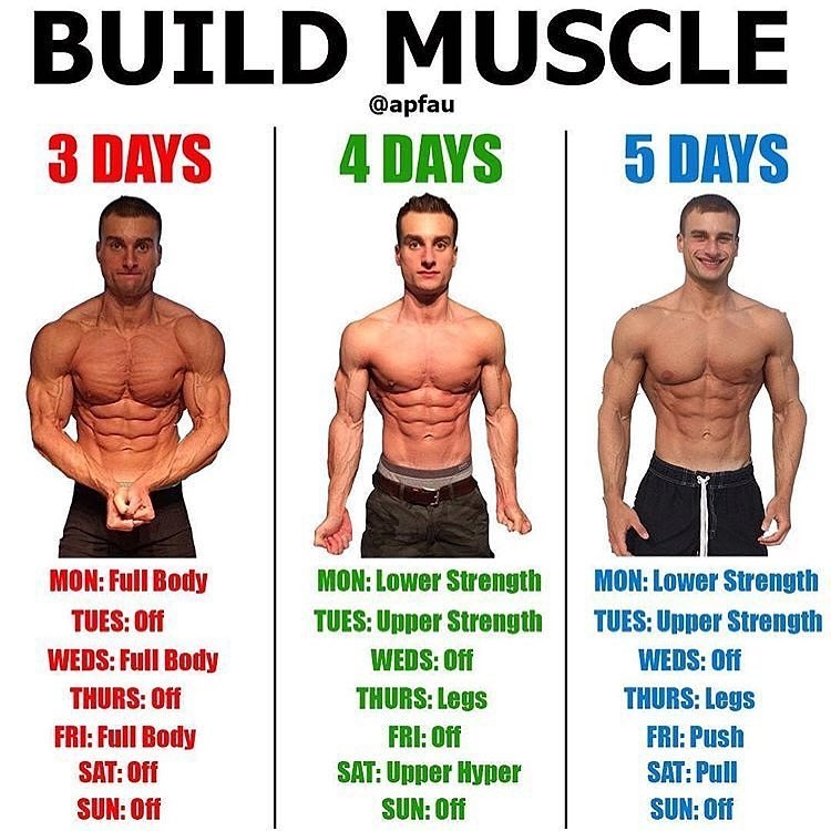 This is How Many Days A Week Should I Workout. If you get ask how many days a week do you need to workout, what would be your answer?