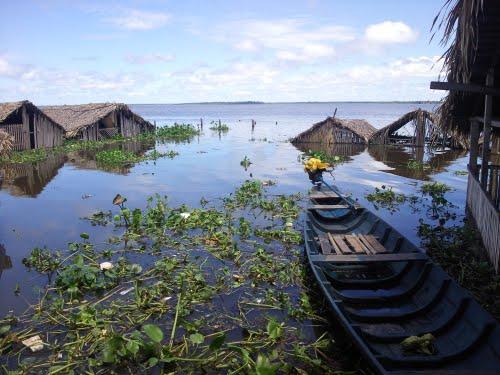 Resultado de imagem para Conceição do Lago-Açu