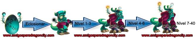 imagen del crecimiento del dragon franky