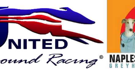 GreyhoundNews: Greyhound Racing Today - Saturday December ...