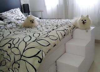 escadas para cães camas altas