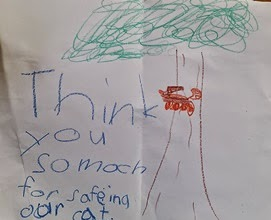"Child's drawing of tree with cat on it and the words ""Think you so moch for safeing our cat."""