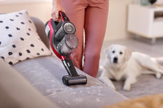 La borsa di martina animali in casa come risolvere il problema dei peli di cani e gatti un po - Come risolvere il problema dell umidita in casa ...