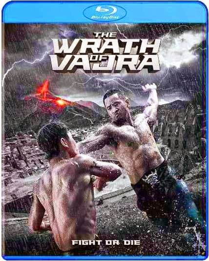 The Wrath Of Vajra (2013) Hindi Dubbed BluRay 480p 300MB Poster