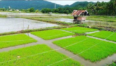 TUJUAN WISATA BARU PALING POPULER DI INDONESIA  10 TUJUAN WISATA BARU PALING POPULER DI INDONESIA 2018