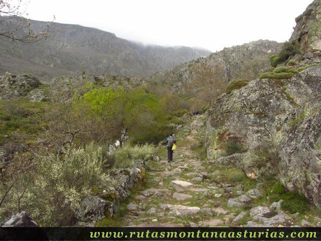 Camino empedrado del Cañón del Cárdena