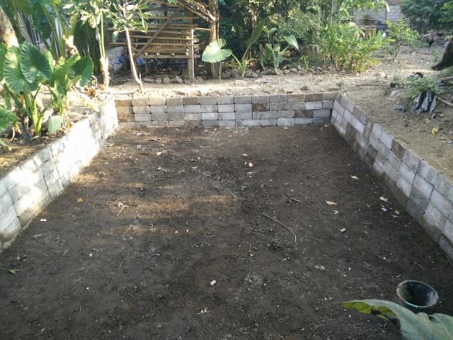 Dinding kolam dirapikan dengan diberi batako yang disusun