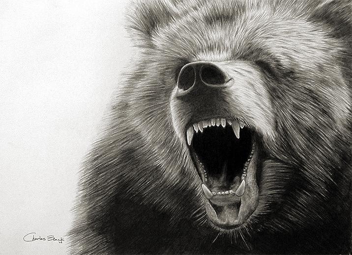 Grizzly bear fantasy art