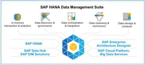Cómo funciona SAP HANA Data Management - Consultoria-SAP