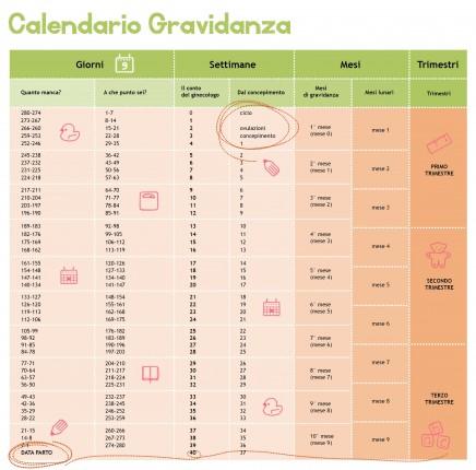 Calendario Settimane Gravidanza Calcolo.゚ Domani Mamma ゚ ゚ Calcolare La Dpp Ovvero La Data