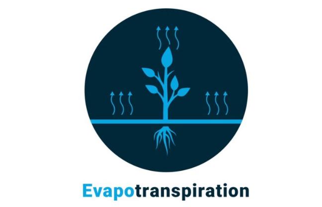 Metode Perhitungan Evapotranspirasi