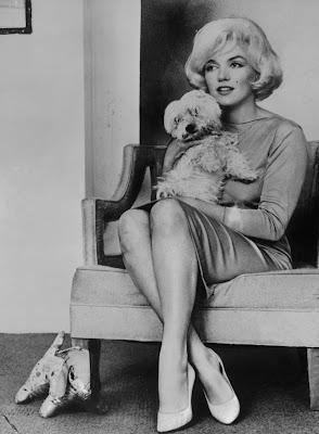 Andrew O'Hagan - Rozważania psa Mafa i jego przyjaciółki Marilyn Monroe, Recenzja, Marzenie Literackie