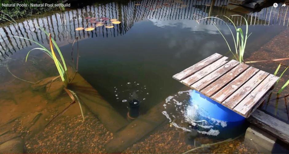 Living the Devon Dream: More Swimming Pond Ideas