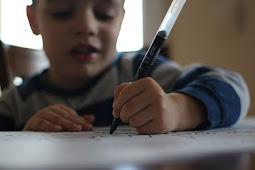Pengalaman Menulis Buku Mini untuk Siswa Kelas 5 Tema 6 Subtema 2