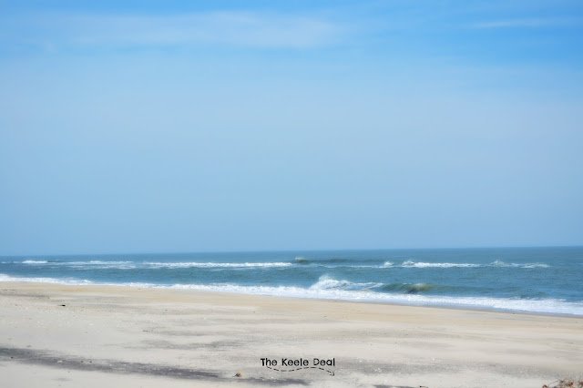 Beach Assateague Island Maryland