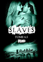 https://lachroniquedespassions.blogspot.fr/2017/09/slaves-tome-65-louis-de-amelie-c-astier.html