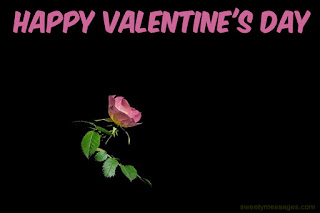 happy valentine day images pink rose