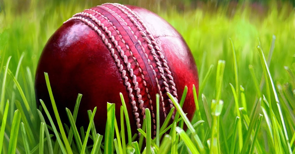 Cork Ball Cricket Bat: How To Manufacture Cricket Ball