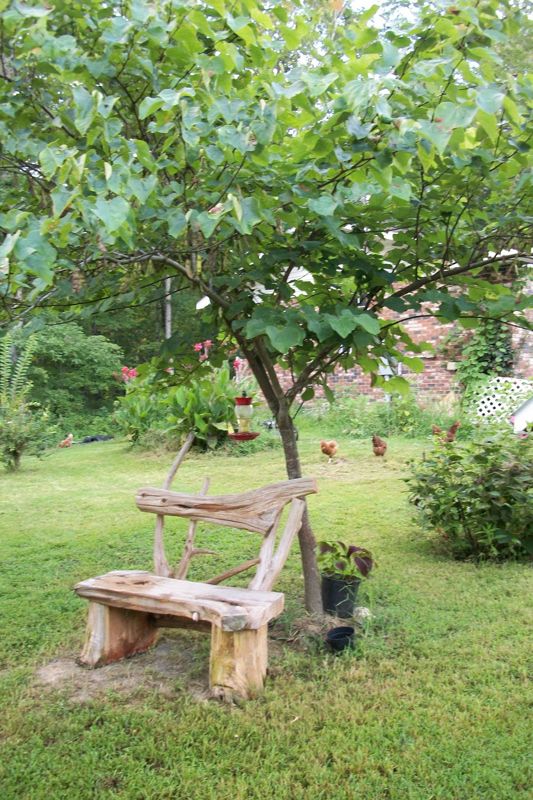 Diggin 39 with dixie 2017 square foot garden my new for Garden trees b q
