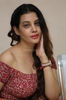 Diksha Panth in a Deep neck Short dress at Maya Mall pre release function ~ Celebrities Exclusive Galleries 042.JPG