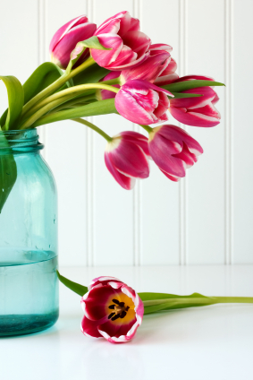 These bright pink tulips are fresh and bright.