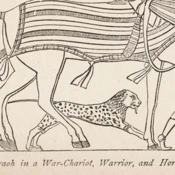 Crop of Egyptian chariot pic