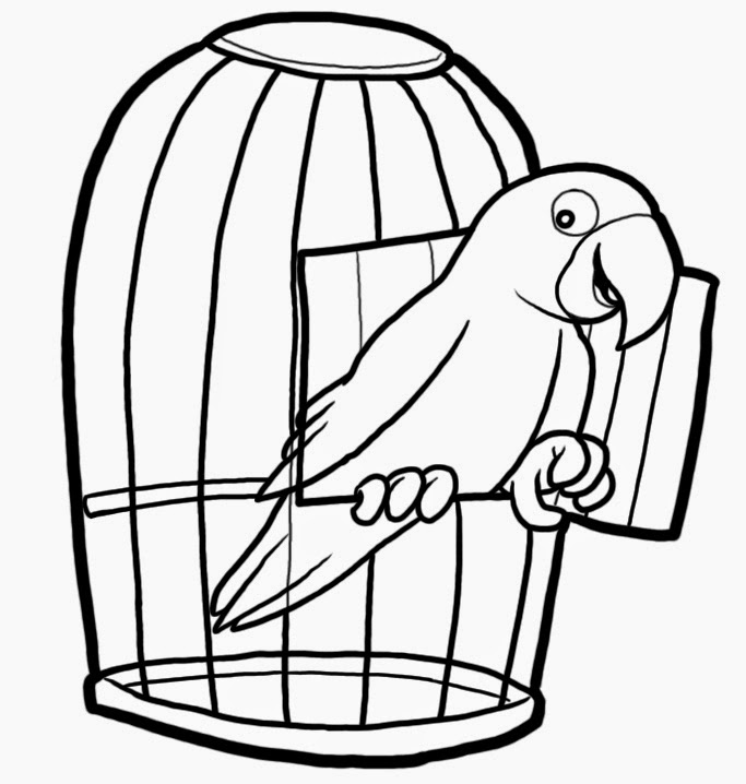 Critical Thinking Puzzles: Parrots and Cages Puzzle