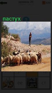 1100 слов стадо баранов пасет пастух 20 уровень