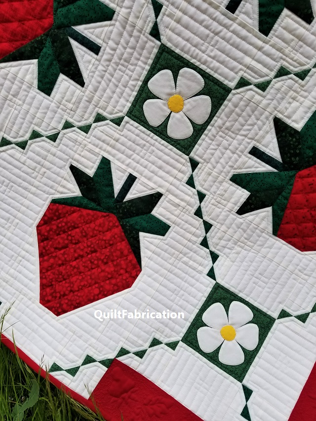Strawberry Splendor background quilting