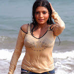 Actress Pooja Chopra Hot Wet Photos