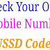 अपना नंबर चेक करना: Idea, Airtel, Vodafone, BSNL, Docomo