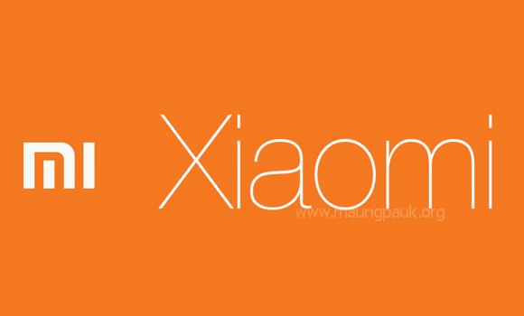 Xiaomi Mi Flash Tool 2016.12.22.0