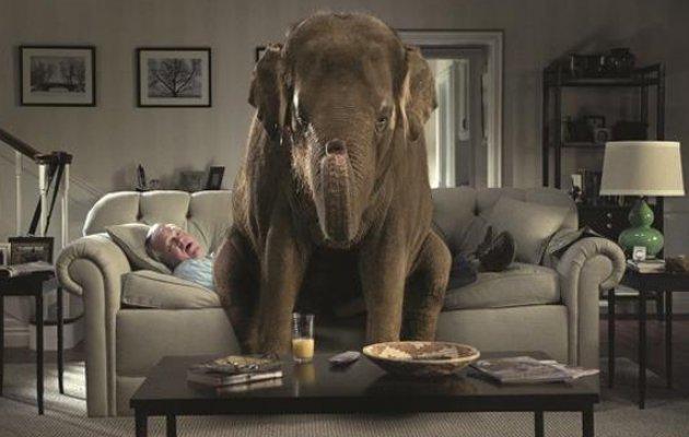 Ο ελέφαντας στο δωμάτιο είναι ανήσυχος