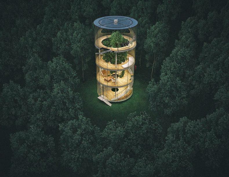 Casa de vidrio inspirado en la naturaleza construido alrededor de un árbol