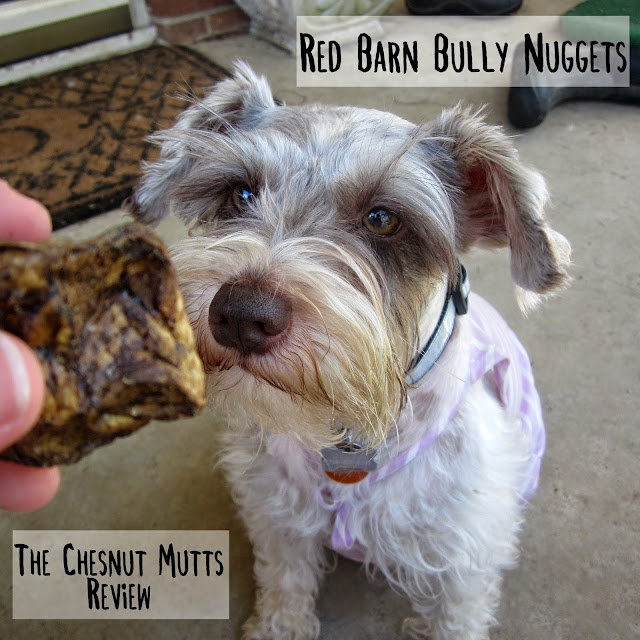 The Chesnut Mutts RedBarn Bully Nuggets Review