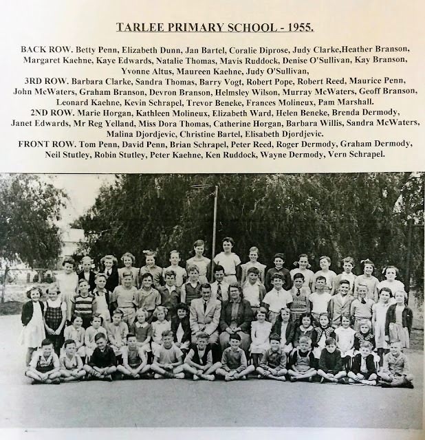 Tarlee Primary School 1955