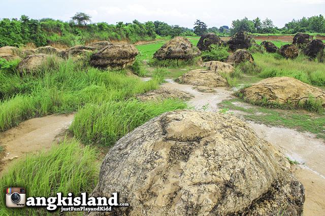 bukit jamur indonesia