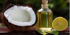 menghilangkan ketombe membandel dengan masker rambut minyak kelapa dan minyak zaitun