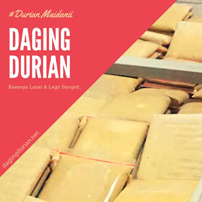 pabrik-daging-durian-medan-harum-di