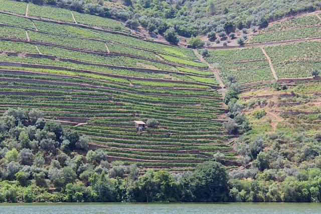 Douro+pinhao+porto+portogallo+itinerario