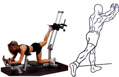 Ejercicios para subir de peso extensión cadera cola