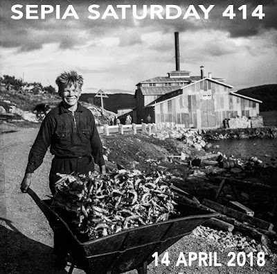 http://sepiasaturday.blogspot.com/2018/04/sepia-saturday-414-14-april-2018.html