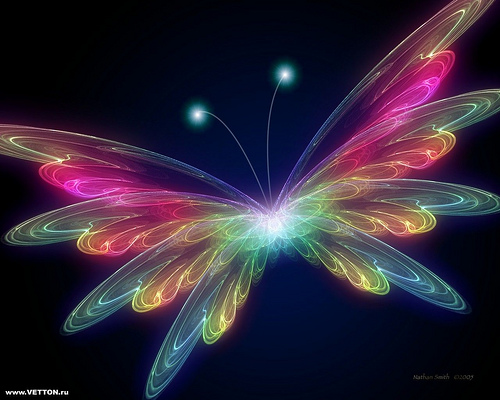 The Fun Starts here!: cool electric butterfly hd wallpaper
