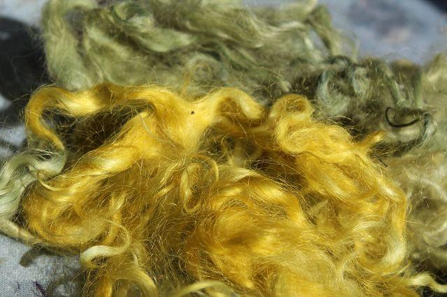 haar haare borste haarschnitt frisur haarschneiden bilder