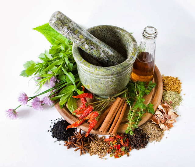 Khasiat dan manfaat tanaman obat herbal