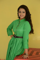 Geethanjali in Green Dress at Mixture Potlam Movie Pressmeet March 2017 026.JPG