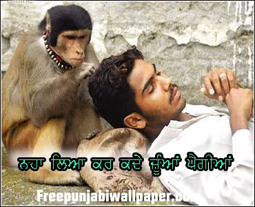 Cute Itouch Wallpapers Punjabi Funny Wallpaper See N Explore World