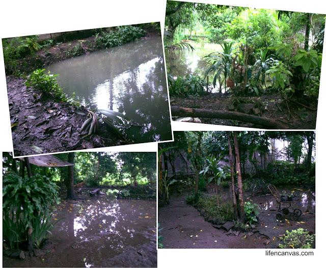 a day after typhoon Labuyo
