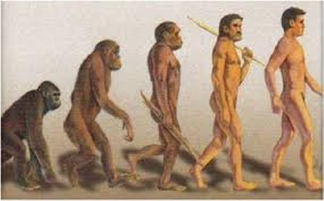 Manusia Sang Individu